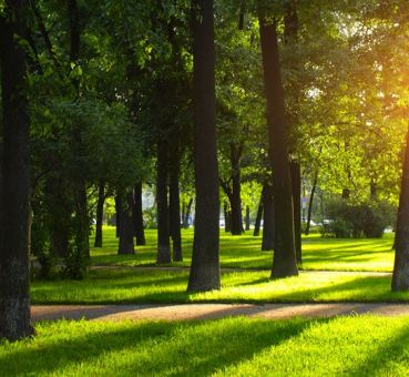 Best US Cities by Public Parks and Walkability