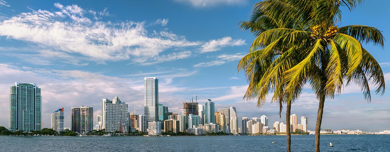 The Miami waterfront