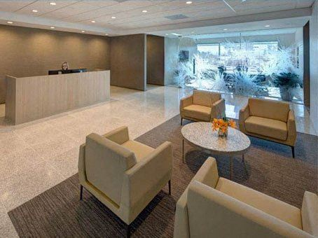 Office Freedom | 24624 Interstate 45 N