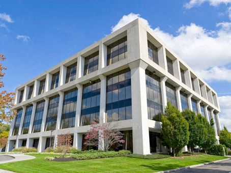 Office Freedom | 520 White Plains Road