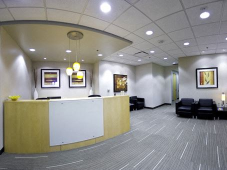 Office Freedom | 7280 NW Eighty Seventh Terrace