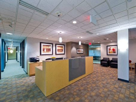 Office Freedom   39555 Orchard Hill Place