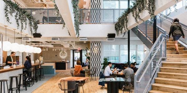 Office Freedom | Diamondback Drive