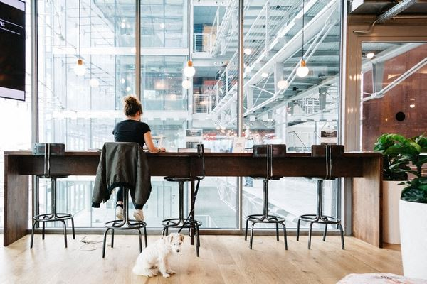 Office Freedom | South Grant Street