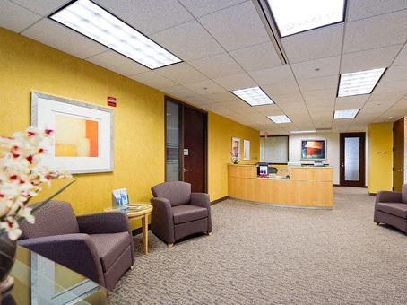 Office Freedom | 2010 Corporate Ridge