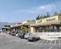 Indian Springs Plaza - Montrose